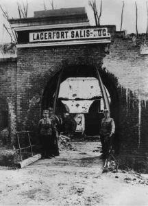 Salissoglio1915